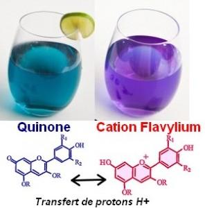 Changement chimique couleur thé pois quinone cation flavylium