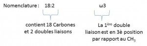 Nomenclature acides gras omega 3