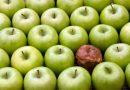 Peut-on manger des aliments avec des moisissures sans risque ? Lesquels jeter ?