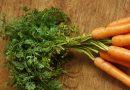 Idées pour cuisiner les fanes de légumes et limiter le gaspillage