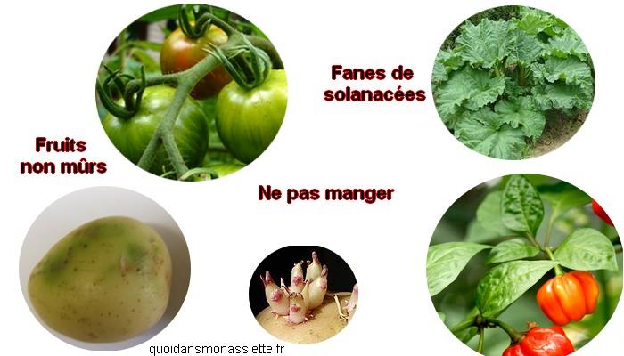 legumes fanes non comestibles parties solanacées solanine