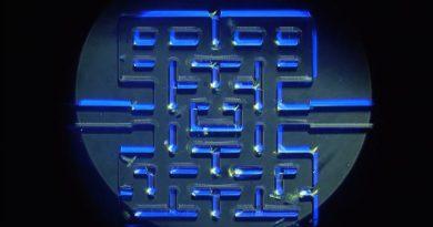 pac-man micro-organisme norvege labyrinthe maze interactions proie predateur