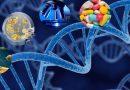 CRISPR-Cas9, des ciseaux à ADN révolutionnaires en génie génétique