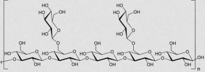 lentinane molécule shiitake anti-cancer