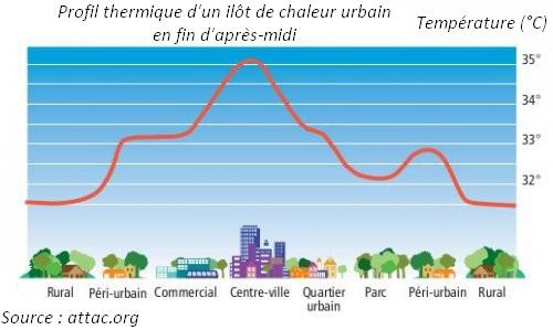 ilot chaleur urbain profil thermique regulation temperature