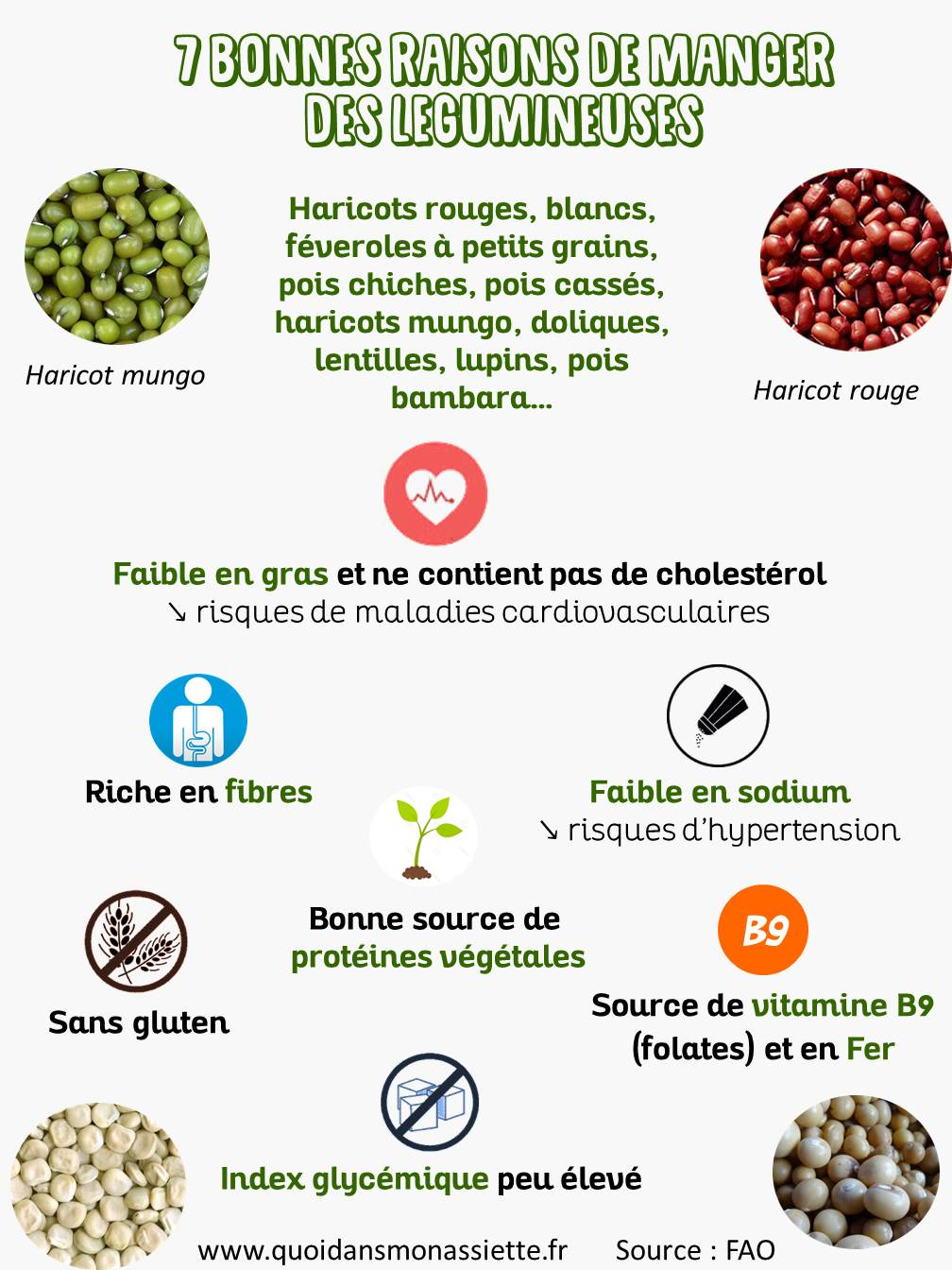 legumineuses bonnes raisons consommer manger fruits secs