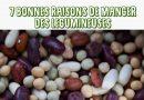 7 bonnes raisons de manger des légumineuses