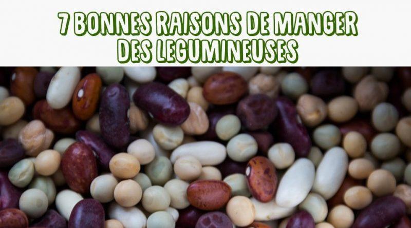 bonne raisons manger legumineuses legumes secs