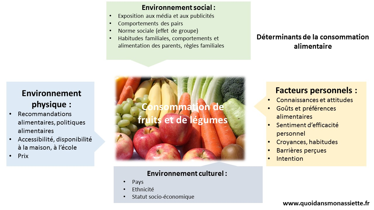 determinant consommation alimentaire choix preferences