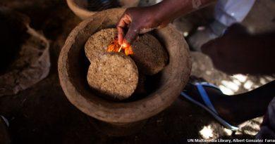 Produire de l'énergie à partir des excréments humains : des fèces au biogaz ?