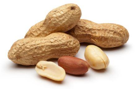 arachides cacahuete allergenes