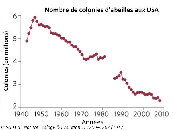 Nombre colonies abeilles evolution etats-unies usa