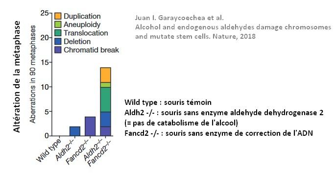 alcool mutation genetique cancer