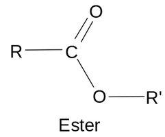 liaison ester chimique