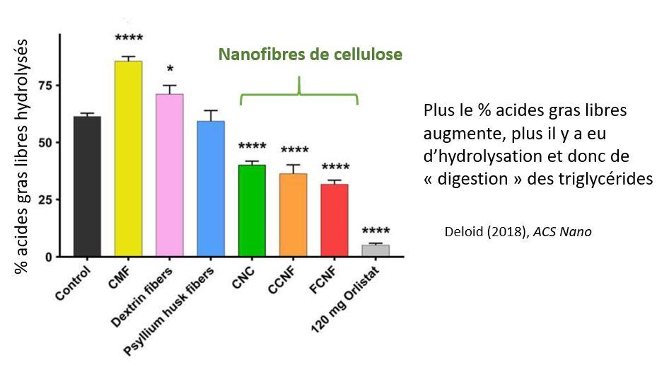 Nanofibres cellulose lipides lipase metabolisme digestion