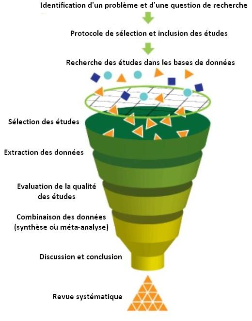 Meta-analyses étapes
