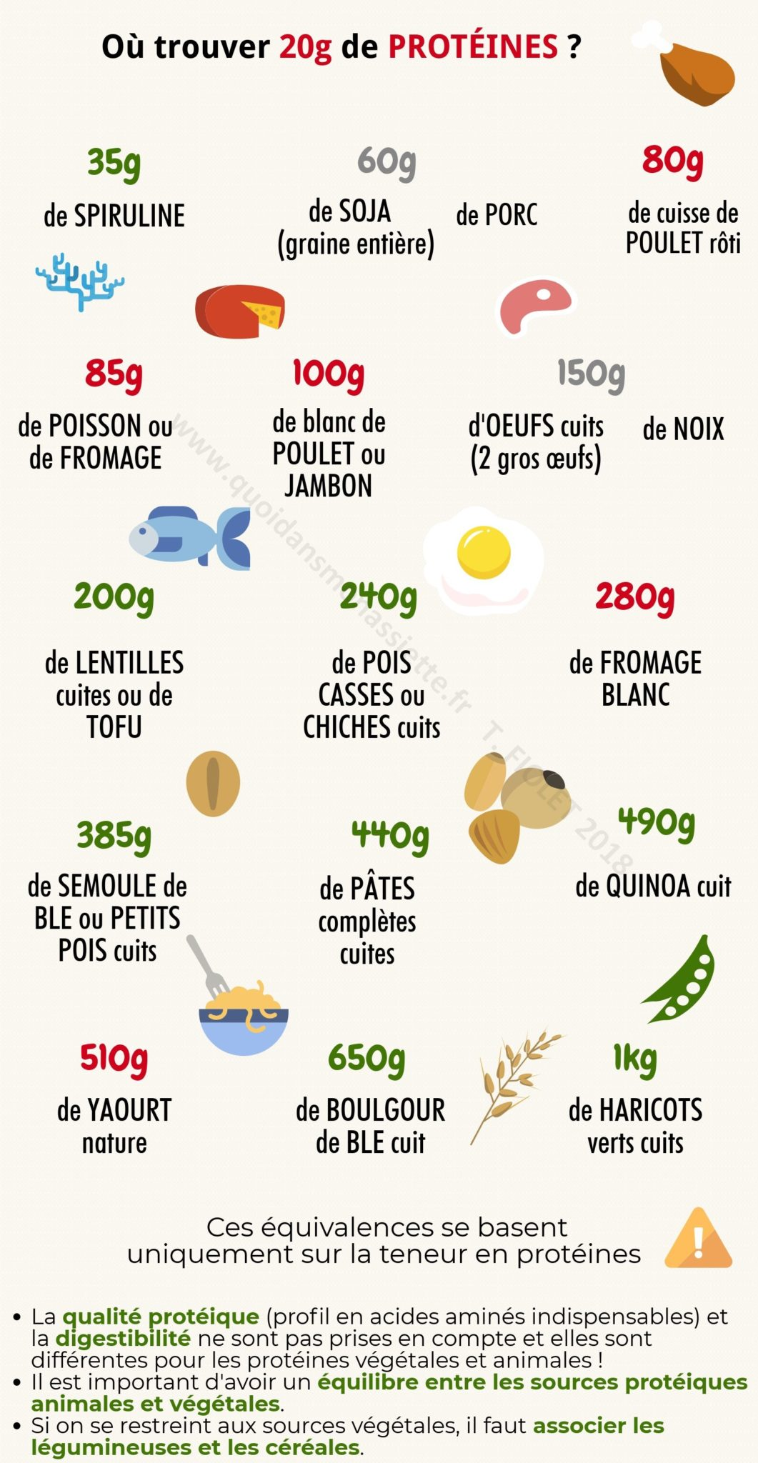 portion protéines equivalence 20g