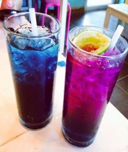 The bleu violet pois Blue Butterfly pea tea