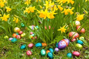 Chasse oaux oeufs paques cloches Easter eggs