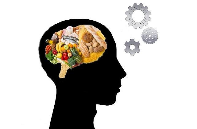 D'où viennent la faim et la satiété ?