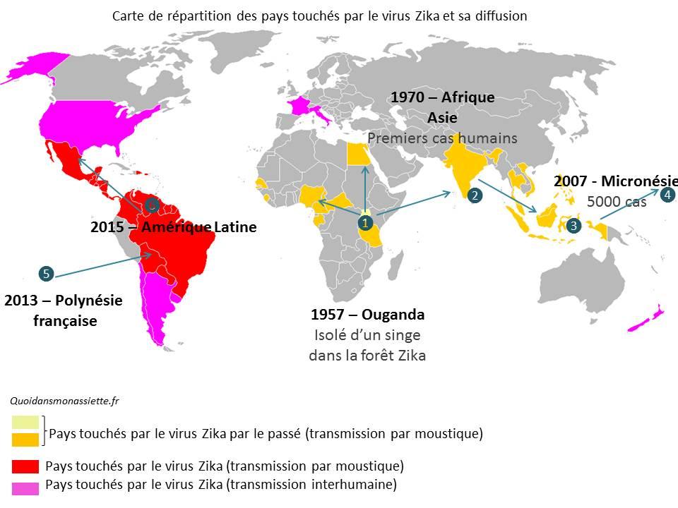 carte monde virus zika incidence repartition distribution world map