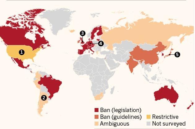 mapa de regulación genética humana modificación de embriones