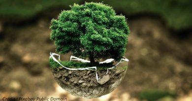 Societe consommation impact environnemental