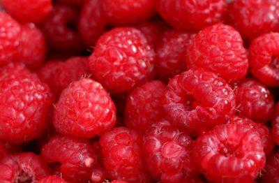 couleur-fruit-rouge-framboise