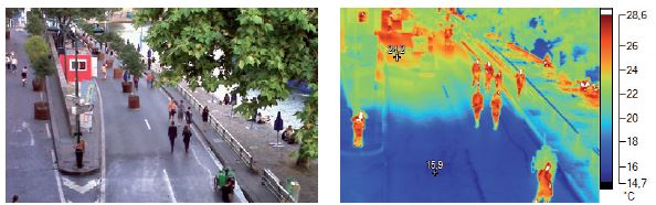 eau diminue temperature sol regulation thermique