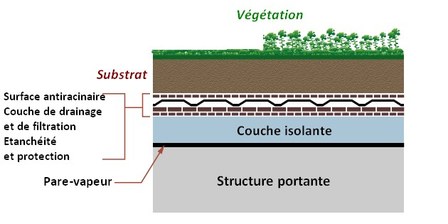schema toit vegetalise green roof composition structure
