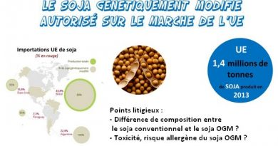 Soja OGM UE autorisation marche européen