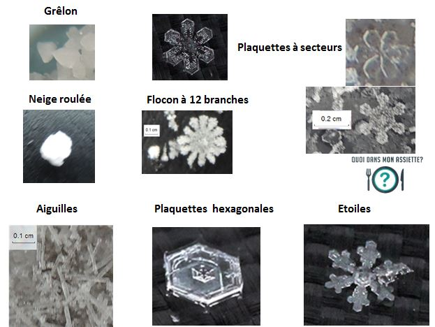 flocons neiges forme classification