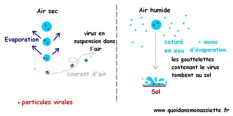 humidité air virus grippe