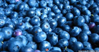 baie açai berry superfruit antioxydant