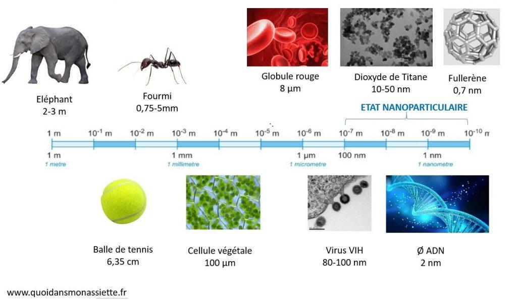 Nanoparticules nanomatériaux dioxyde de titane tailles dimension comparaison echelle