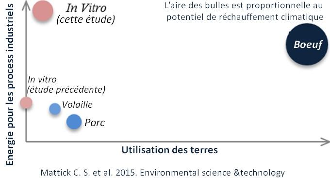 impact environnemental viande in vitro consequence