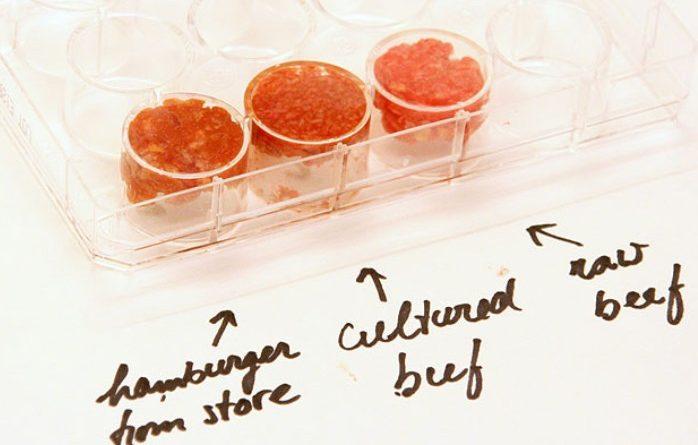 in vitro beef meat viande mark post hamburger
