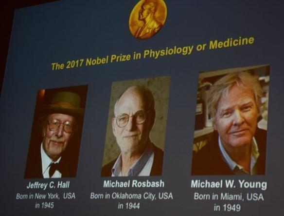 prix nobel médecine physiologie chronibiologie rythme circadiens