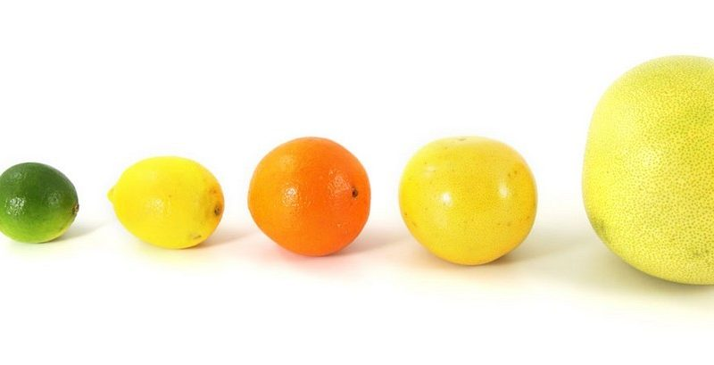 diff rences entre cl mentines mandarines et oranges les agrumes une grande famille. Black Bedroom Furniture Sets. Home Design Ideas