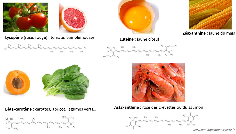 caroténoïdes carotènes alimentation carotte béta-carotène