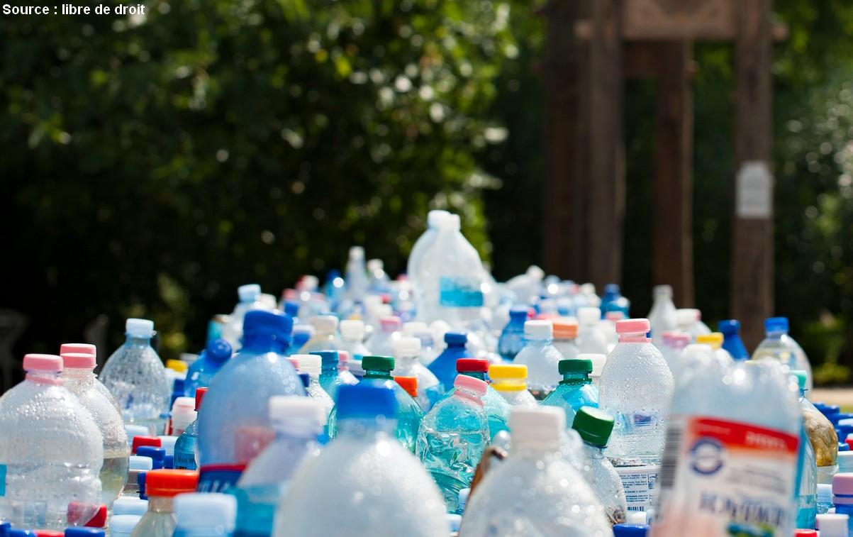 bisphenol A plastique perturbateur endocrinien