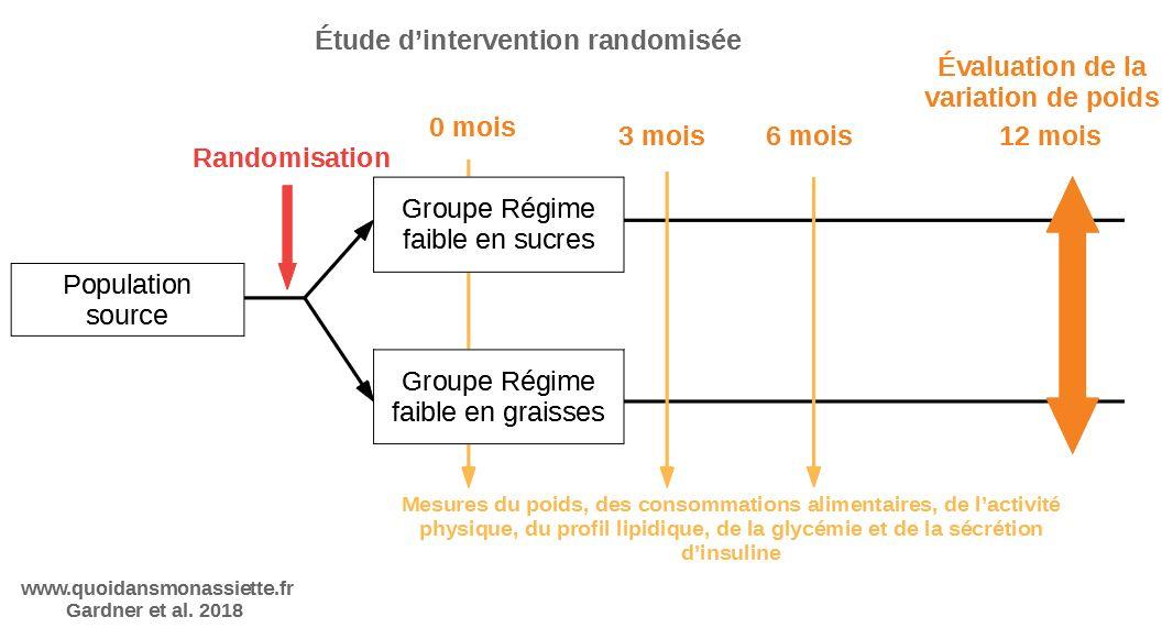 etude intervention schema randomisee perte de poids regimes