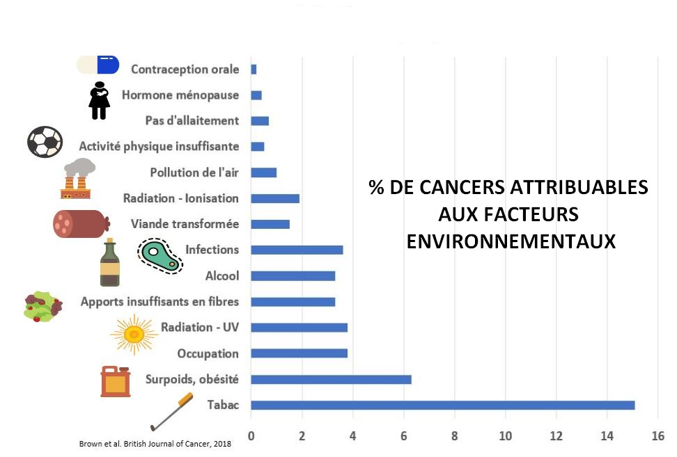 fraction attribuable cancer royaume-uni research image