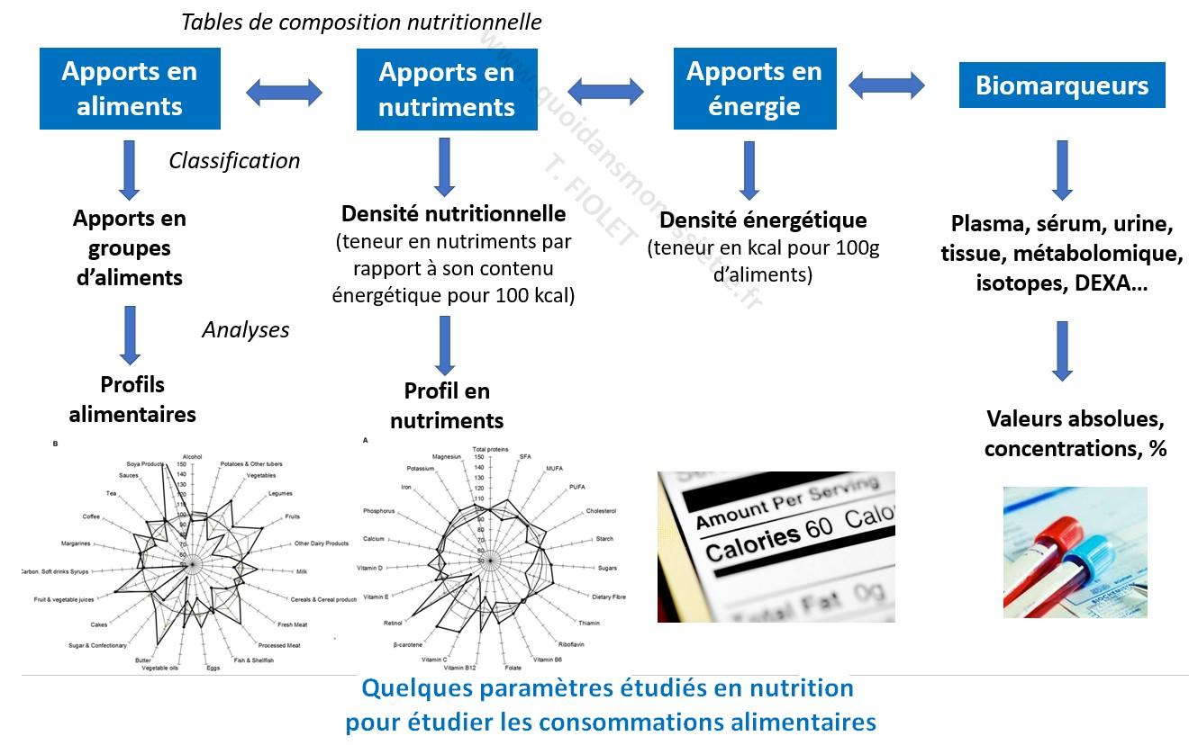 Estimation consommations alimentaires paramètres evaluation