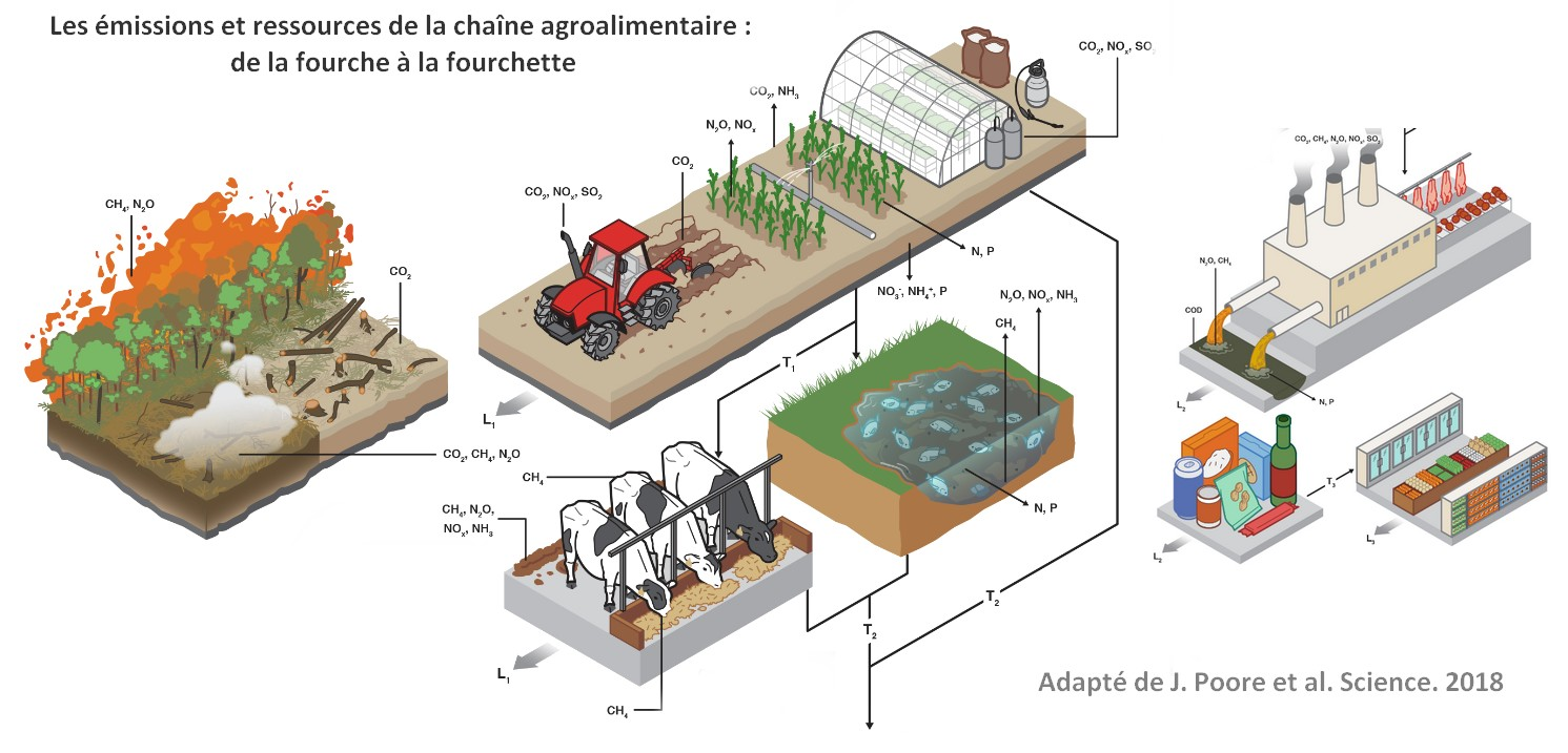 schéma chaine agroalimentaire environnement impact
