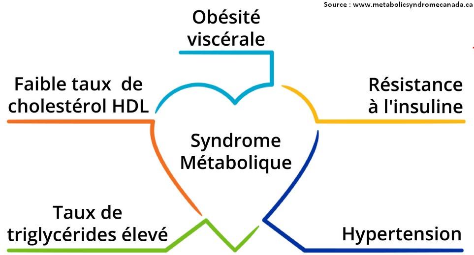 syndrome métabolique schema