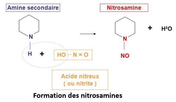 Formation nitrosamines