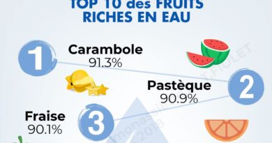 top 10 fruits riches en eau en-tête