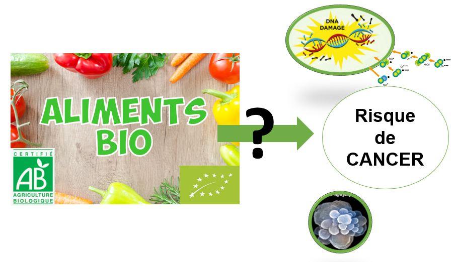 9e5c175ab79 DECRYPTAGE   L alimentation BIO associée statistiquement à une réduction du  risque de cancer au global dans NutriNet-Santé   - Quoi dans mon assiette