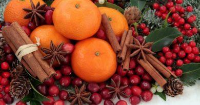 fruits noel aliments repas